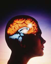 IQ — показатель интеллекта